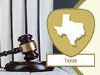 Nursing Jurisprudence and Ethics for Texas: Standards of Nursing Practice from Wild Iris Medical Education